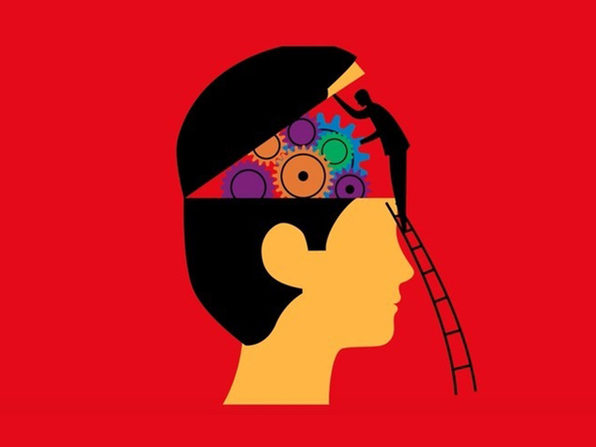 That Stranger In The Mirror: Neuroscience For Everyone