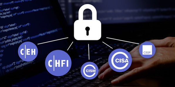 Computer Hacker Professional Certification Package (CEH, CHFI, CISM, CISA, CISSP) - Product Image