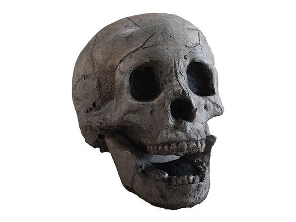 Ceramic Fireplace Aged Skull (10-Pack)