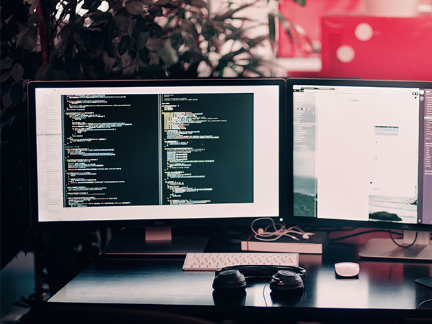 Master The Ins & Outs of Java Programming Then Learn Useful Software Principles, Ace Interviews, and Become an Industry-Ready Programmer