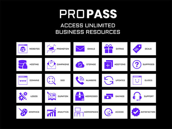 ProPass All-Access Business Pass: 1-Yr Subscription