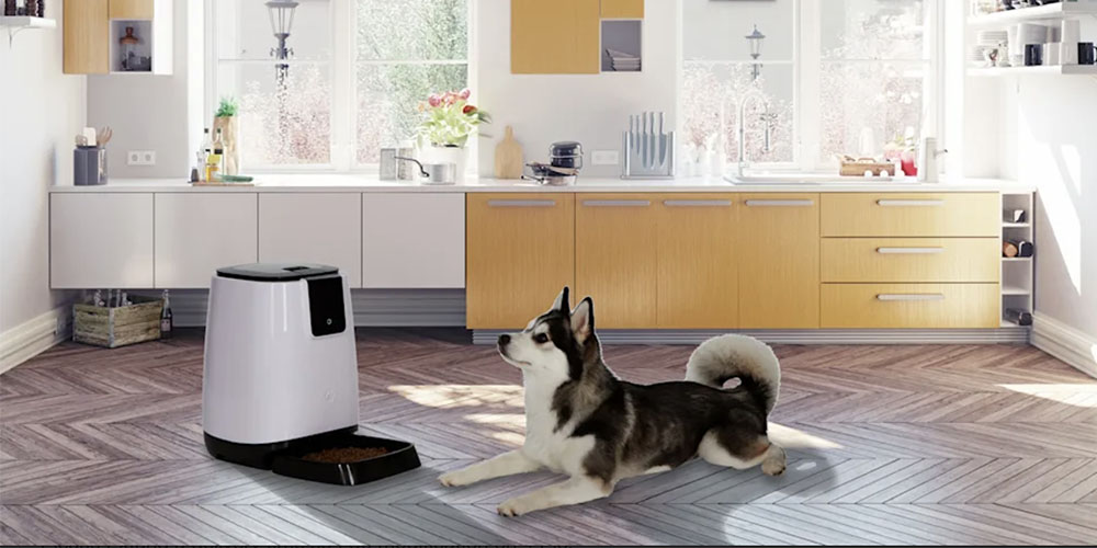 Get the EZ-PET Smart Programmable Automatic Feeder for $63.99 with promo code CMSAVE20