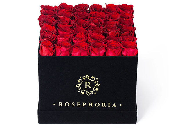 36 Red Roses in Black Velvet Box