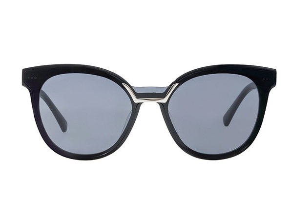 Pictor Sunglasses