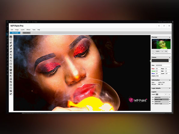 WP Paint Pro: WordPress Image Editor (2 to 5 Websites)