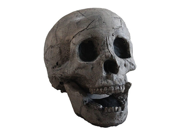 Ceramic Fireplace Aged Skull (4-Pack)