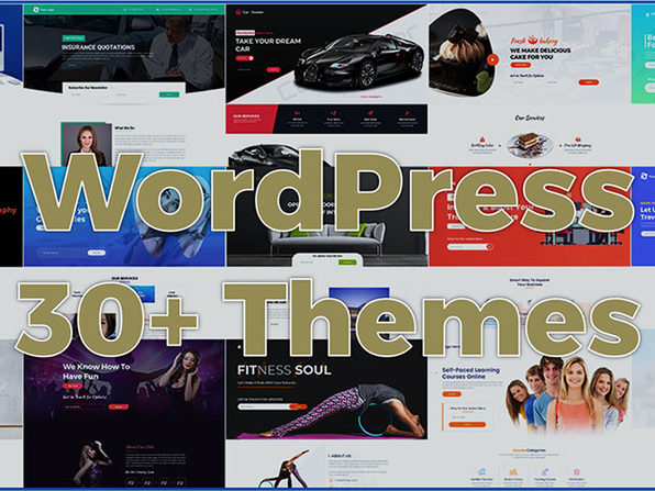 WordPress 30 Themes / Sales Pages Bundle