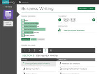 Business Writing - Product Image