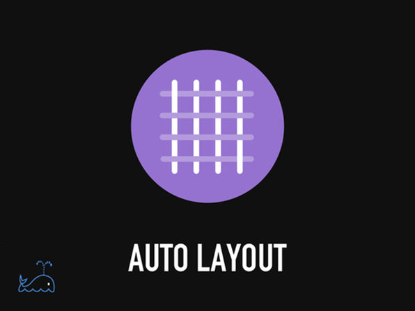 The Bitfountain Auto Layout Immersive Course