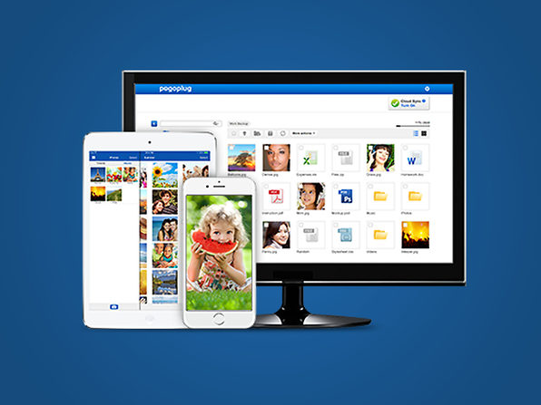 Pogoplug Remote Access Lifetime (Pro) - Product Image