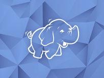 Taming Big Data with MapReduce & Hadoop - Product Image