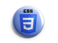 Learn CSS Web Design & Development - Product Image