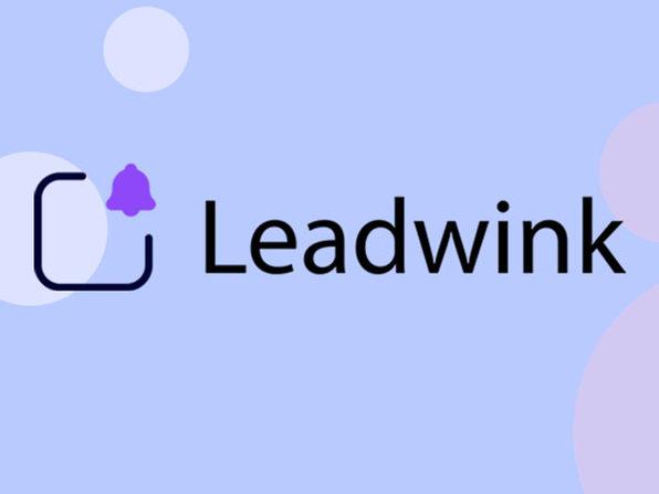 Leadwink: Lifetime Subscriptions