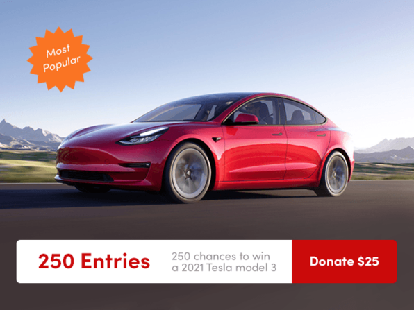 250 Entries to Win a 2021 Tesla Model 3 & Donate to Charity
