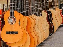 The 2022 Curious Guitarist Master Class Bundle