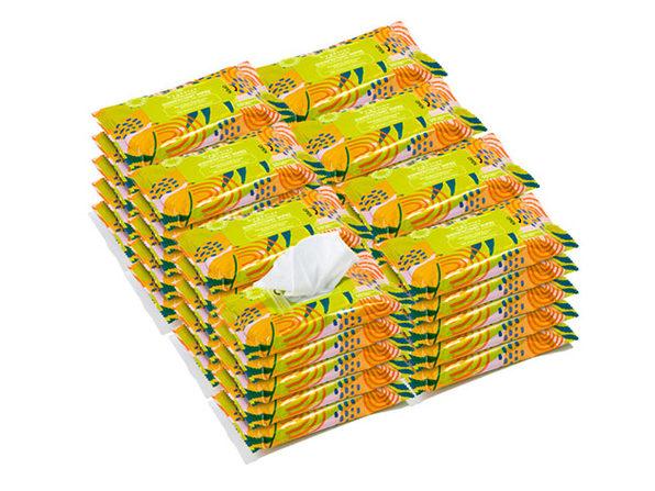 Hygenius™ Multi-Surface 75% Alcohol Sanitizing Wipes (40 Pack)