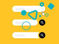 Advanced Search Engine (SEO) Program - Product Image