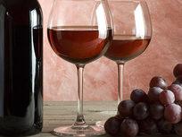 Wine Making 101 - Product Image