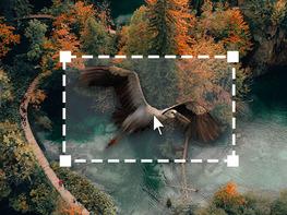 The Adobe After Effects & Nuke VFX Production Bundle