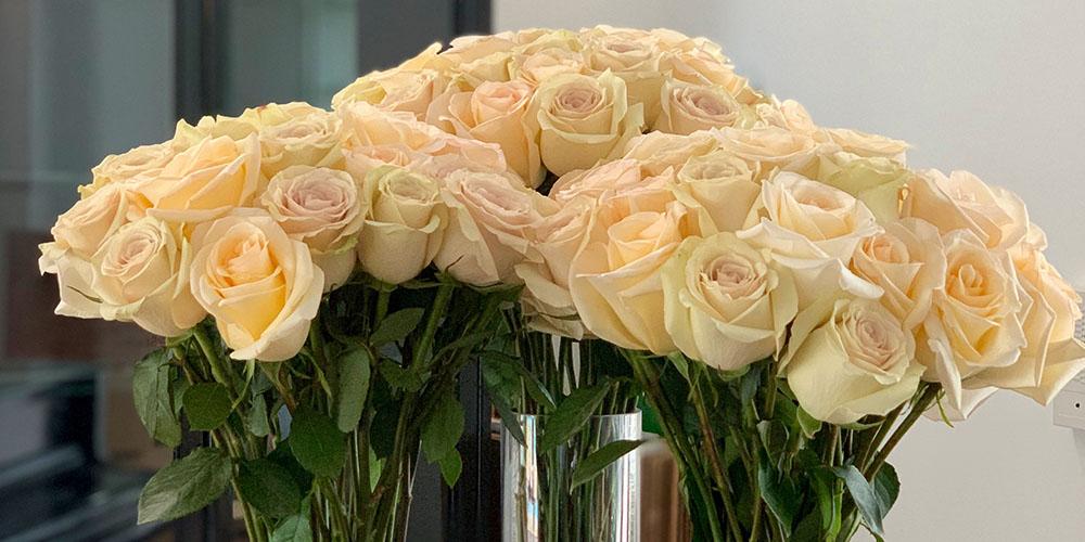 2 Dozen Cream Roses for $49.99 (Digital Voucher), on sale for $49.99 (reg. $81)