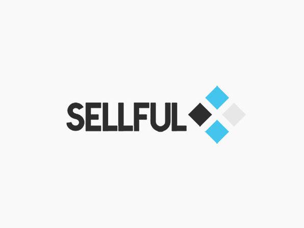 Sellful - White Label Website Builder & Software: Basic Agency Plan (Lifetime)