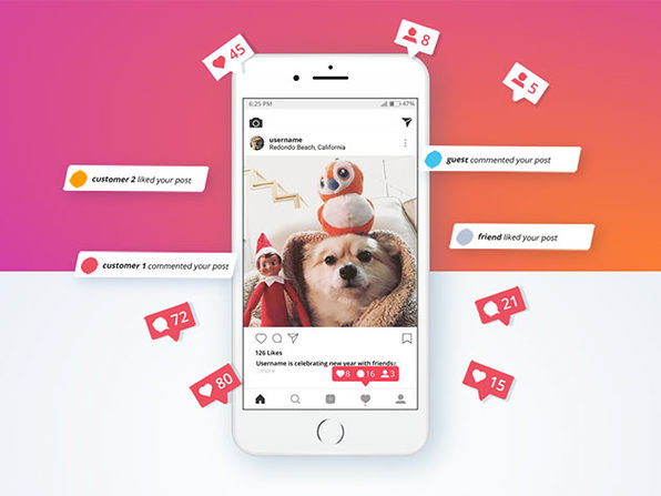 Appz Instagram Assistant: Lifetime Subscription (5 Accounts)