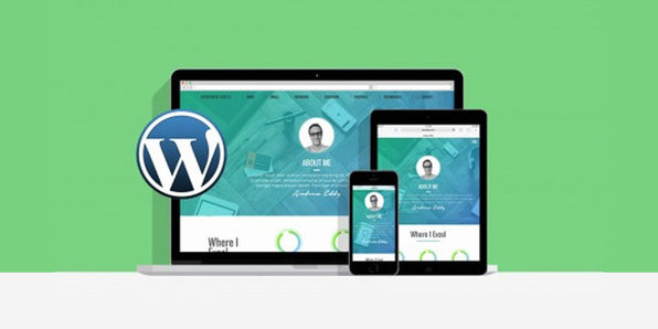 Learn WordPress by Building 2 Responsive Websites - Product Image