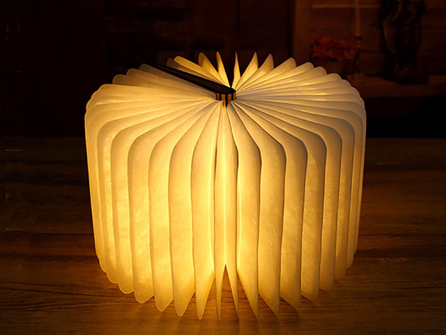 A lamp that looks like an opened book.