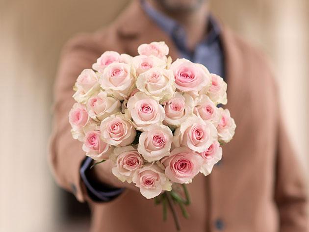 Centurylink Net Login >> The Bouqs Spring Flower Special: $30 for $50 | CenturyLink Deals