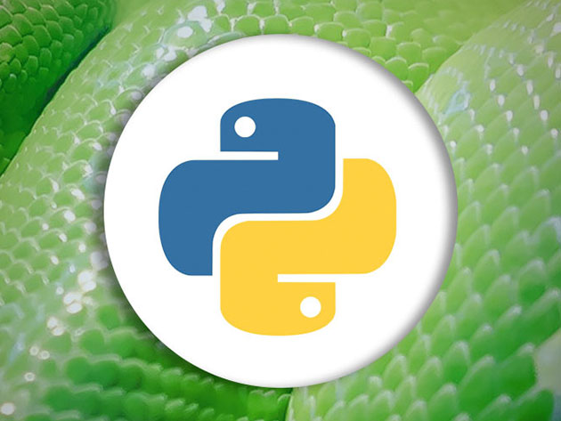 how to build a web app using python