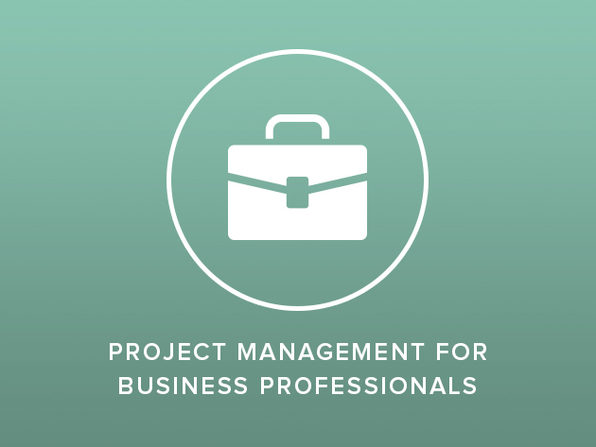 Project Management for Business Professionals - Product Image