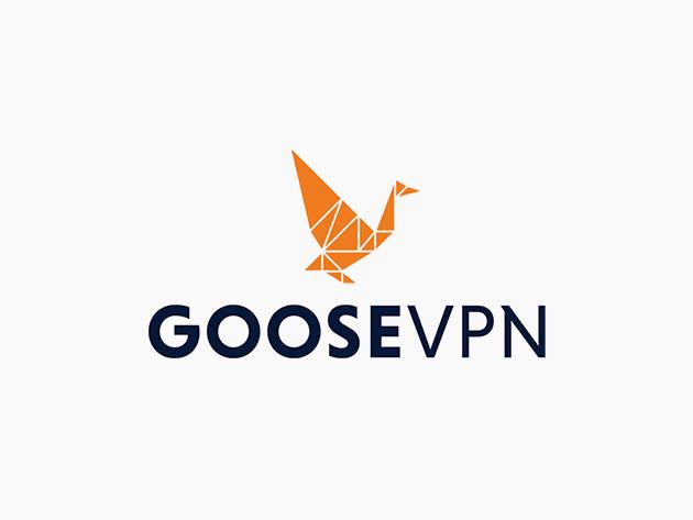Teaser for Goose VPN: 2-Yr Subscription