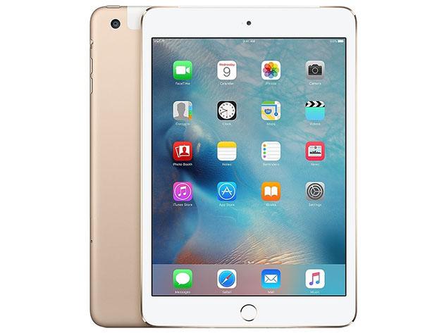 An iPad Mini