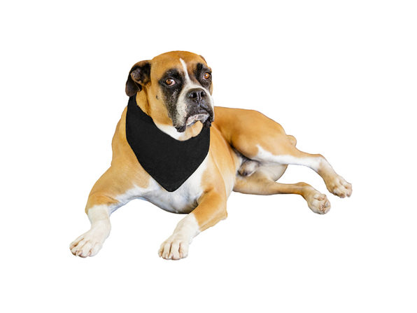 2-Pack Solid Polyester Dog Neckerchief Triangle Bibs - Extra Large - Black