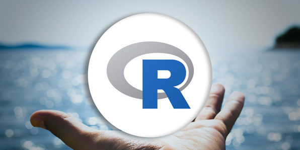 Introduction to R Programming - Product Image